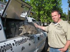 We offer wildlife removal, consulting, home inspections and repair services due to wildlife intrusions. Critter & Pest Defense company is always ready to help with your needs in #Wildlife Removal Orlando. We guarantee our outcome 100% and cannot wait to work with you to accomplish all your needs. Get here more info: http://www.critterandpestdefense.com/services/wildlife-control/