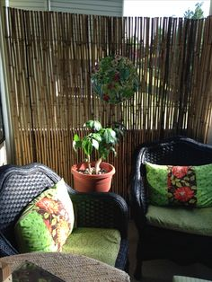 Easy makeover using bamboo fencing for privacy, spray paint on chairs and little sewing. Results...cozy condo balcony!