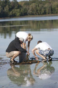 The University of Maine | Zoology