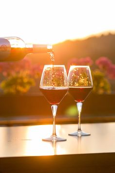 Why drink Asian wines? Asian wine is no gimmick. Many talented local winemakers are making the Asian wine transform like a caterpillar into a butterfly. Guide Vin, Wine Guide, Chenin Blanc, Cabernet Sauvignon, Sweet Wines For Beginners, Vegan Wine, Wine Images, Pinot Noir, Virginia Wineries