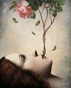 """Secret of the Rose"" by Christian Schloe"