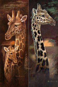 New mosaic full laid Diamond painting embroidery Puppy Bernese Mountain Deer beads cross stitch handwork animal kits sale Giraffe Drawing, Giraffe Painting, Giraffe Art, Elephant Love, Cross Paintings, Animal Paintings, Animal Drawings, Giraffe Coloring Pages, Giraffe Colors