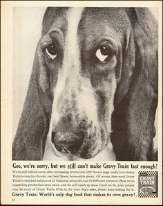1961-Gaines Gravy Train`Dog Food`Basset Hound-Vintage Ad picclick.com