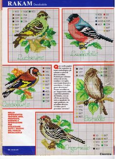 Winter birds; some will be useful for the patchwork embroidered duvet I am going to make. Small cross stitch patterns, along with color charts