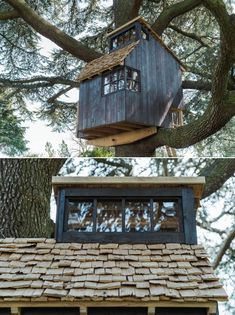 Larch Cladding, Main Theme, Treehouses, Another World, Branches, Mother Nature, Exterior, Cabin, Adventure
