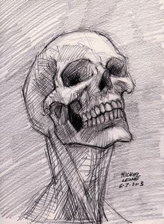 Skull sketch 6-7-2013 by myconius on DeviantArt