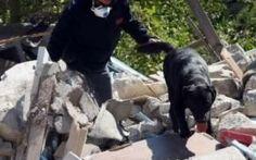 Terremoto Amatrice: Le unità cinofile che hanno salvato le persone Le unità cinofile, quadre speciali composte dal binomio cane e proprietario, arrivate ad Amatrice da tutta Italia, hanno strappato dalla morte adulti e bambini sepolti sotto le macerie del terremoto #unitàcinofile #canidasoccorso