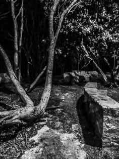 "©Sin titulo, de la serie: ""Paisaje nocturno"" 24 de Agosto de 2013 Campeche, Camp; México."