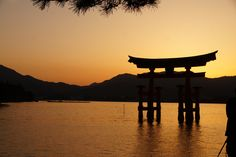 Great tori. itsukushima  #japa #sunset #photography
