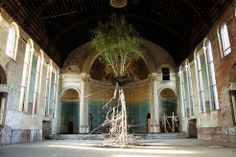 Artist Hangs Living Trees in Abandoned Churches