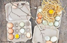 Life At Cobble Hill Farm: Chicken Keeping: Cleaning and Storing Your Farm Fresh Eggs