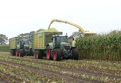 Loonbedrijf Verhoeven met hun nieuwe KRONE BiG X 600 Trekkerweb cornharv...