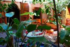 En poussant la porte du Riad Marrakech Maïpa, rompant avec l'agitation des ruelles animées de la médina de Marrakech, vous découvrirez un autre monde, un petit palais en bois de cèdre et en briques de Fès tourné vers un patio fleuri et rafraîchissant. Riad Marrakech, Bled, Plants, Courtyards, Cedar Wood, Bricks, Floral, Home, Plant