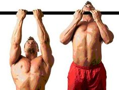 Types of pull-ups on the bar and their impact on the specific groups of muscles