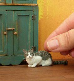 Kerri Pajutee, IGMA Fellow Miniature Animals