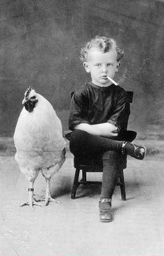 A Big Rooster and a little boy #Chickens #photos