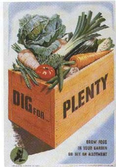 Dig for plenty - these old prints from the victory garden years would be neat to decoupage on wooden crates to hold flower pots, etc.