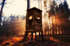 Sonnenstrahlen hinter dem Hochsitz by Marco Stoica on Outdoor Furniture, Outdoor Decor, Landscape, Park, Photos, Sun Rays, Spot Lights, Parks, Lawn Furniture