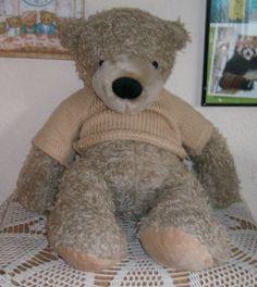 Meine Teddysammlung Bilder