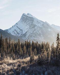 """tannerwendell: """"-25°f sunrise. mt rundle. banff. alberta. (at Mt. Rundle Summit) """""""