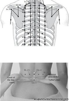Pin by Jillianlsb on Acupuncture/Reflexology Acupuncture Points Chart, Acupressure Points, Massage Tips, Massage Therapy, Reiki Training, Acupuncture For Weight Loss, Medical Anatomy, Chiropractic Care, Traditional Chinese Medicine