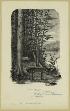 "1881 Henry Hobart Nichols engraving of Indian canoe burial. Written on border: ""Indian fishing tribes of Oregon and Washington Territory dispose of dead in canoes."" ""Tsinuk tribe"" (Chinook Native American tribe)."