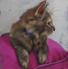 Kitten on Pillow and more kittens