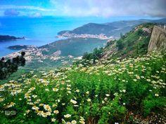 Road to Budva Montenegro