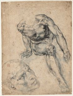 Michelangelo Buonarroti Study of a Male Nude, Separate Study of his Head (recto)