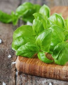 Busuiocul, un remediu naturist de exceptie Salvia, Spinach, Vegetables, Food, Plant, Veggies, Vegetable Recipes, Meals, Yemek