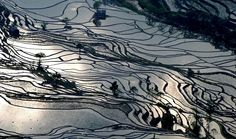 Reflections of the clouds at sunset over the rice terraced mountains of the Hani people in Yuanyang County, Yunnan, China, in wintertime, wh...