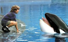Free Willy!!! <3 favorite movie when  I was little! Sigh. Now I feel the need to go to Sea World, and watch the movie :)