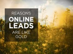 "There's a poor misconception that ""online leads suck."" You may have tried (or are actively trying) to get and manage online leads and aren�..."