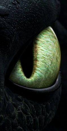 Toothless amazing EYE