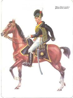 Waterloo 1815, Battle Of Waterloo, Royal Horse Artillery, British Uniforms, Empire, Army Uniform, Napoleonic Wars, Modern Warfare, British Army