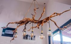 This unique photo is genuinely an interesting design principle. Driftwood Chandelier, Branch Chandelier, Dining Table Lighting, Rustic Lighting, Twig Furniture, Overhead Lighting, Jar Lights, Eclectic Decor, Light Fixtures