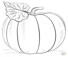 pumkin halloween coloring pages printable and coloring book to print for free. Find more coloring pages online for kids and adults of pumkin halloween coloring pages to print. Easy Halloween Drawings, Fall Drawings, Scary Drawings, Diy Halloween, Halloween Decorations, Flower Drawings, Pencil Drawings, Pumpkin Coloring Pages, Colouring Pages