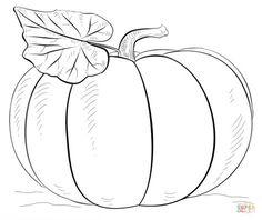 Pumpkin | Super Coloring