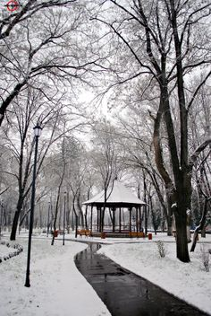 Superb Nature - superbnature: Public garden by covurlui Public Garden, Paradis, Snow, Nature, Photography, Outdoor, Facebook, Winter, Landscape