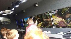 Another successful birthday party  #fifa #LEGOStarWars #xbox #kidsbirthday #techtruck #xboxparties #xbox