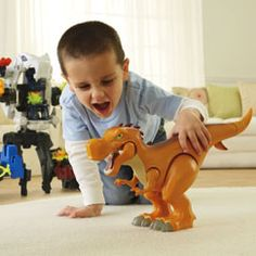 Imaginext® Dinosaur or Castle toys