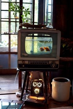 Great idea - vintage tv turned into a fishtank
