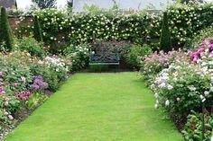 Urban Garden Design From my visit to David Austins Rosegarden Such a lovely place .