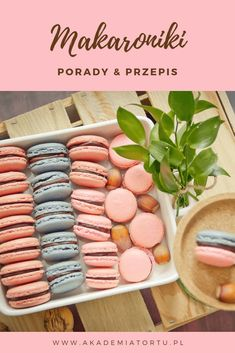 Recipe Fr, Fancy Dishes, Polish Recipes, Macaroons, Food Pictures, Cookie Recipes, Food Photography, Food Porn, Easy Meals