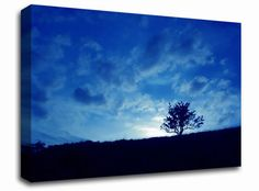 Blue Morning Tree landscape canvas from only £19.99 at Infusion Art http://www.infusionart.co.uk/products/Blue-Morning-Tree-259480.aspx