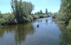 Siempre es mas divertido cuando no vas sólo a #pescar.