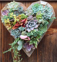Jardín Vertical de medio colgante corazón por SucculentWonderland