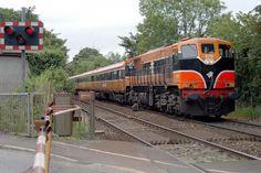 British Rail, Old Trains, Diesel Locomotive, Ireland Travel, Belfast, Buses, Dublin, Childhood Memories, Transportation