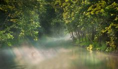 [フリー画像] 自然・風景, 森林, 川・河川, 人と風景, 釣り, 日光・太陽光線, 201103151900 - GATAG|フリー画像・写真素材集 2.0