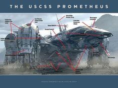 USCSS Prometheus De-Classified! by SpaceJockey1979, via Flickr
